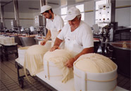 Photograph of the cheese being placed in moulds
